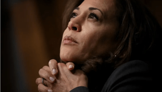 Does Kamala Harris Have a Working-Class Black Man Problem? It's Complicated