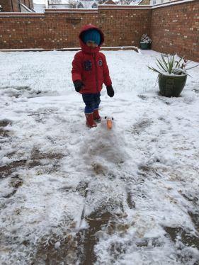 Snow....duck!