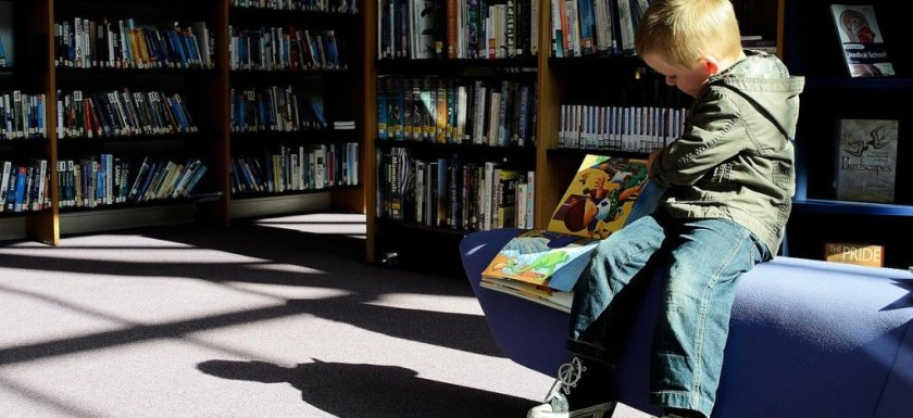 little boy at the library