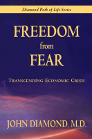 Freedom From Fear: Transcending Economic Crisis book cover