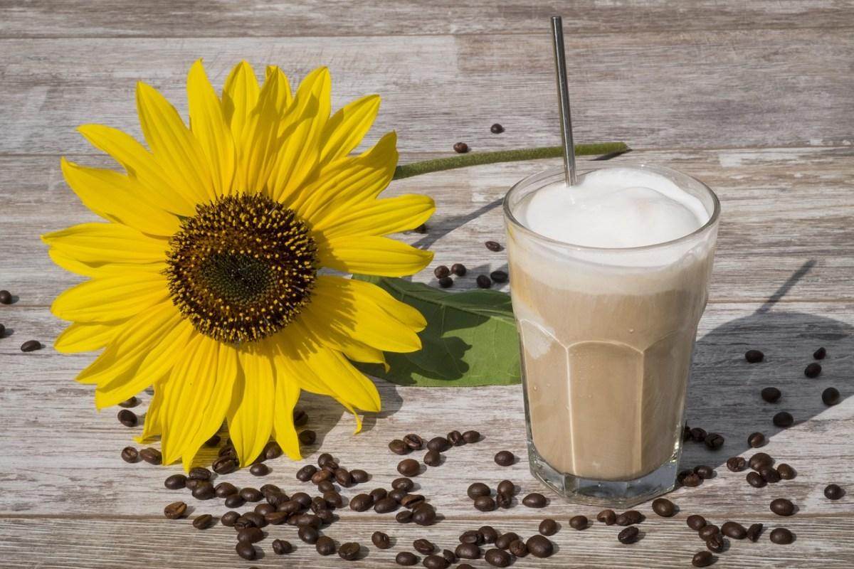 Verdens bedste iskaffe - super forfriskende (opskrift)