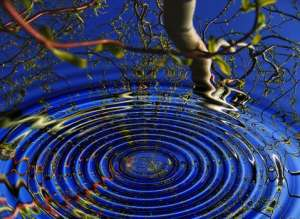 circles in water