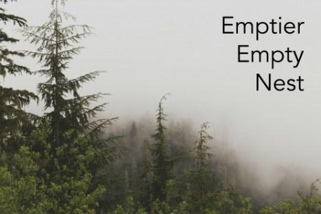 Emptier Empty Nest