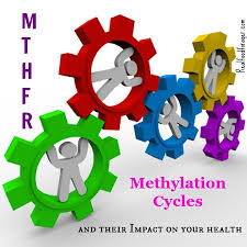 AUTISM: THE ROLE OF MTHFR AND COMT