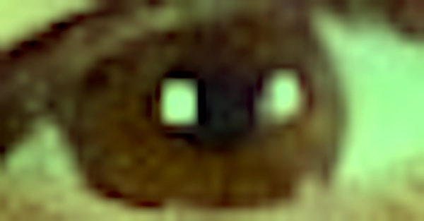 pixelated closeup of Godin's eye with green filter