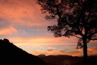 CR8138_121515_sunrise