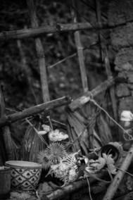 Bàn thờ nhà cụ Phạm thị Bướm, 82 tuổi, thôn Hải Trung, xã Quảng Trường, huyện Quảng Trạch, Quảng Bình sau cơn bão Remaining of altar of Mme Pham thi Buom's, house