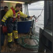 Grab Sampling near Dunstaffnage
