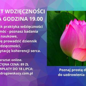 kwiat lotosu oraz informacje na temat warsztatu