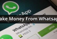 make money from whatsapp