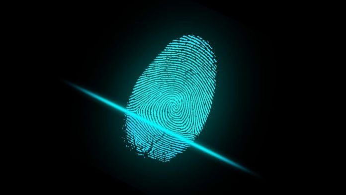 Android Users will Soon Have Fingerprint Sensors on Their Devices 2