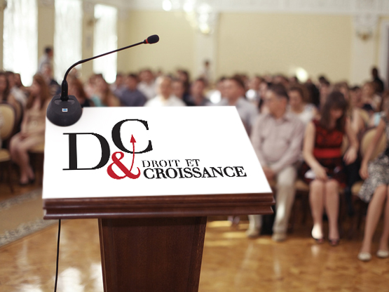 Conférences organisées par D&C