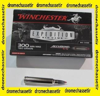 1 boite de 20 cartouches calibre 300 winchester Magnum