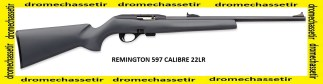 carabine semi autamatique remington 597