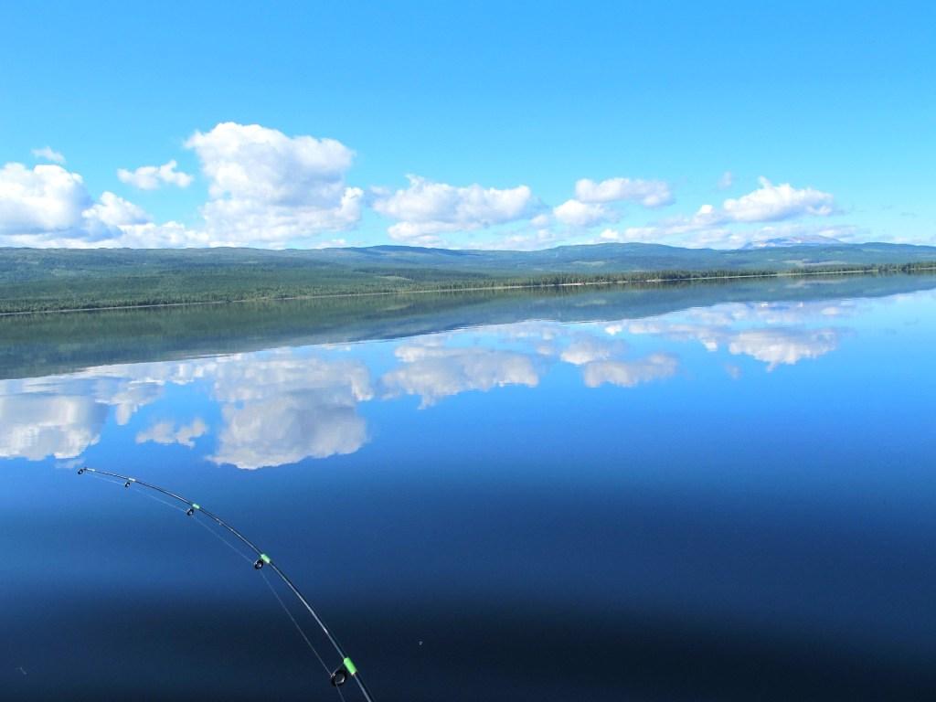Drömfiske på Rengen. Foto Flottargården