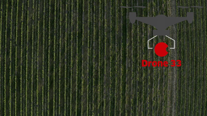 Vidéo Agriculture et Vignes Drone 33