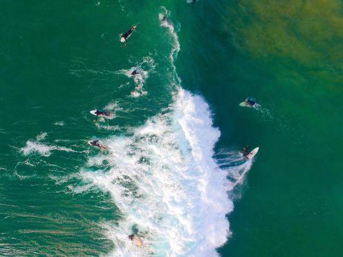 Dominic Grimm - Surfers II