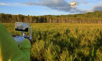drone flying in the air above autumn forest