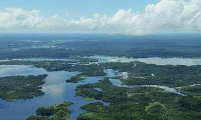 Aerial view of the Amazon Rainforest, near Manaus, the capital of the Brazilian state | Credit: Neil Palmer