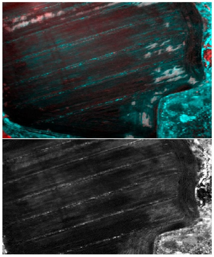 Archaeological structures not related to Roman houses (Area E in Figure 2): (1) False color composition of PCA of Tetracam, bands 123 with an equalize enhancement of the histogram; (2) NDVI with band 920 and an equalize enhancement of the histogram.