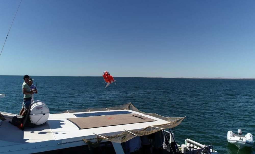 Researchers can even operate these drones from the back of a boat. . Credit: Murdoch University