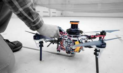 IT researchers describe an autonomous system for a fleet of drones to collaboratively search under dense forest canopies using only onboard computation and wireless communication — no GPS required.