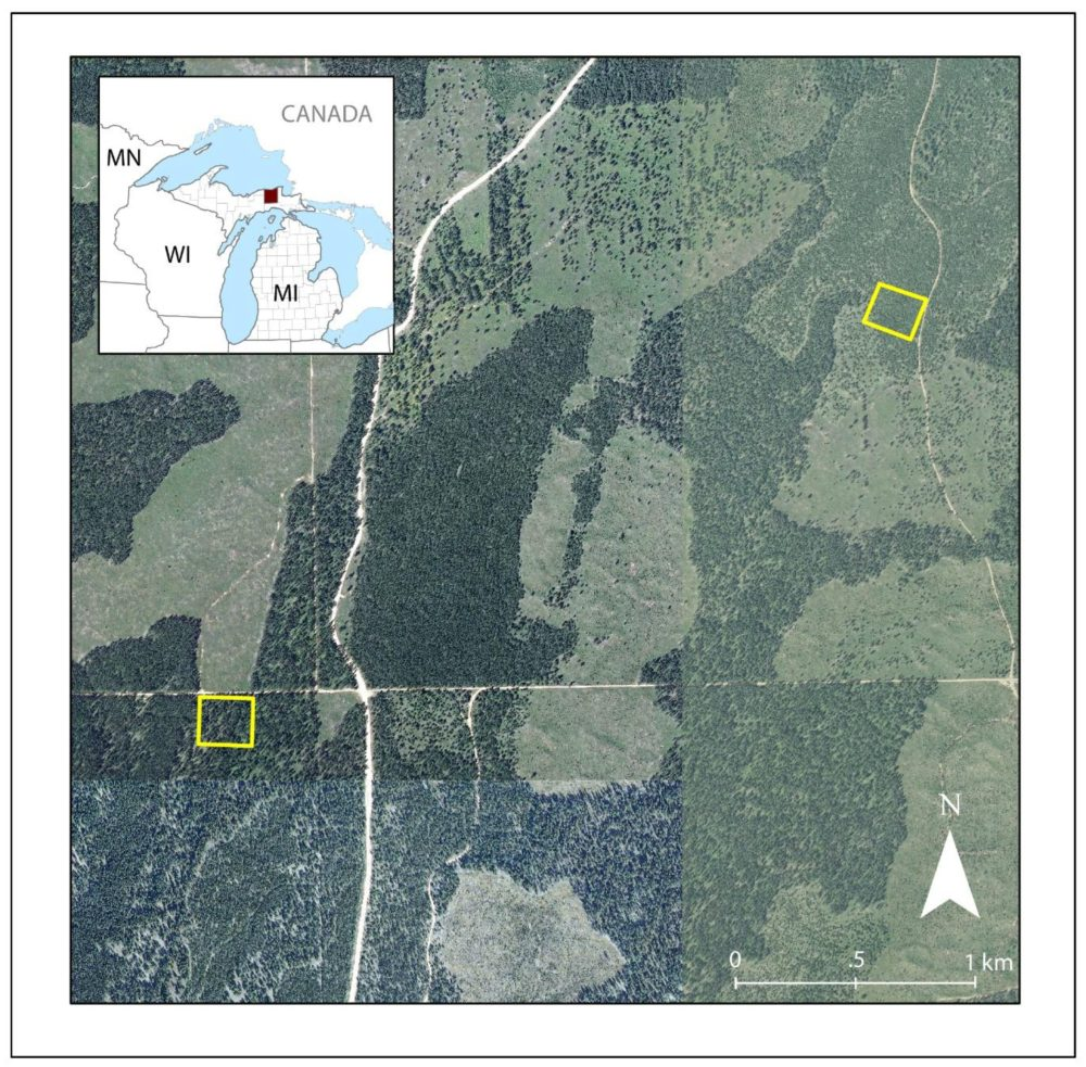 Duck Lake study area in UP of Michigan, USA. The NAIP image was acquired in 2008, prior to the fire. Plot A is on the eastern edge while Plot B is in the southwestern corner of this image.