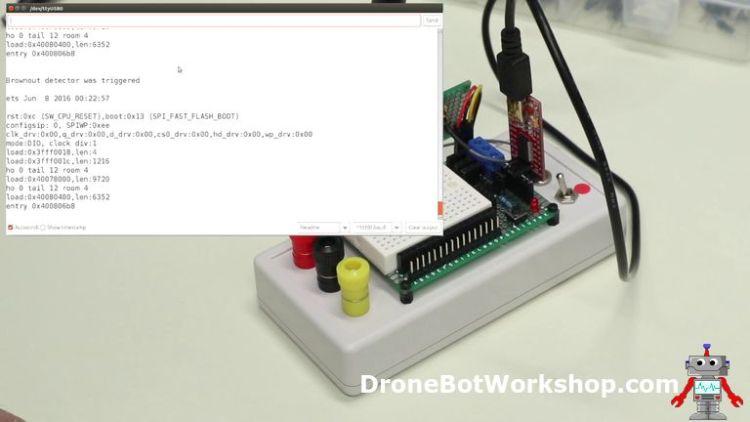 ESP32-CAM Developers Module Brownout