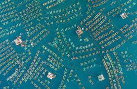 Amazing drone photos from DJI's SkyPixel contest winners 0023