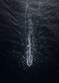 Amazing drone photos from DJI's SkyPixel contest winners 0025