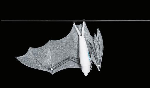 Meet Festo's semi-autonomous Bionic Flying Fox with a wingspan of more than 7 feet 0006