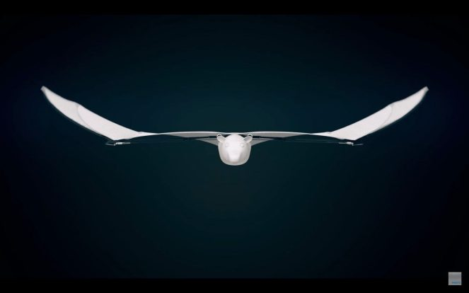 Meet Festo's semi-autonomous Bionic Flying Fox with a wingspan of more than 7 feet 0010