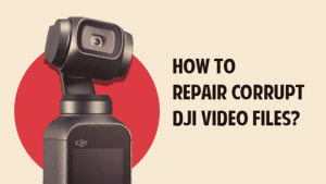 Photo from the drone photograph bible article titled How to Repair Corrupt DJI Video Files?