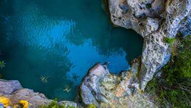 Photo of Ormanın İçinde ki Güzellik: Kral Havuzu