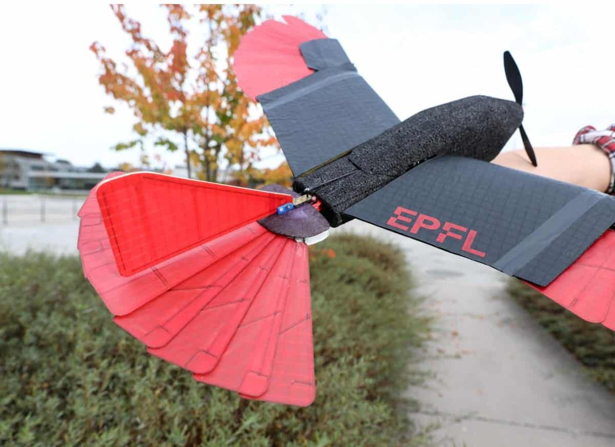 A drone with morphing wings offers agility and endurance