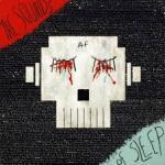 Animal Flag - The Sounds Of Sleep
