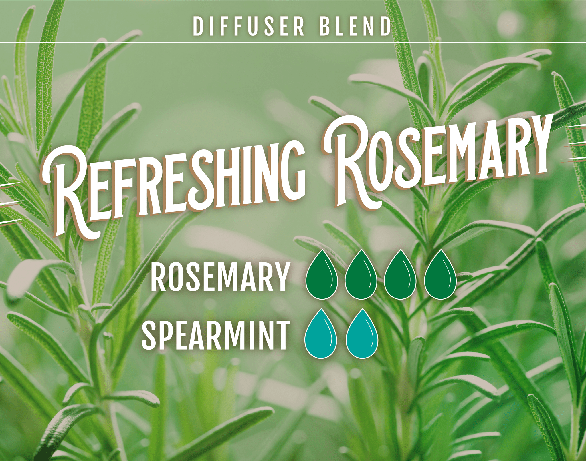 Refreshing Rosemary Diffuser Blend - 4 drops of Rosemary, 2 Drops of Spearmint
