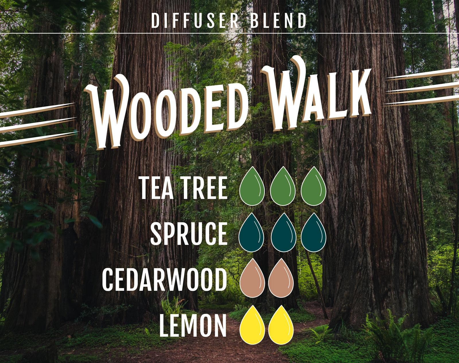 Tea Tree Essential Oil Diffuser Blend Wooded Walk - 3 drops Tea Tree 3 drops Spruce 2 drops Cedarwood 2 drops Lemon