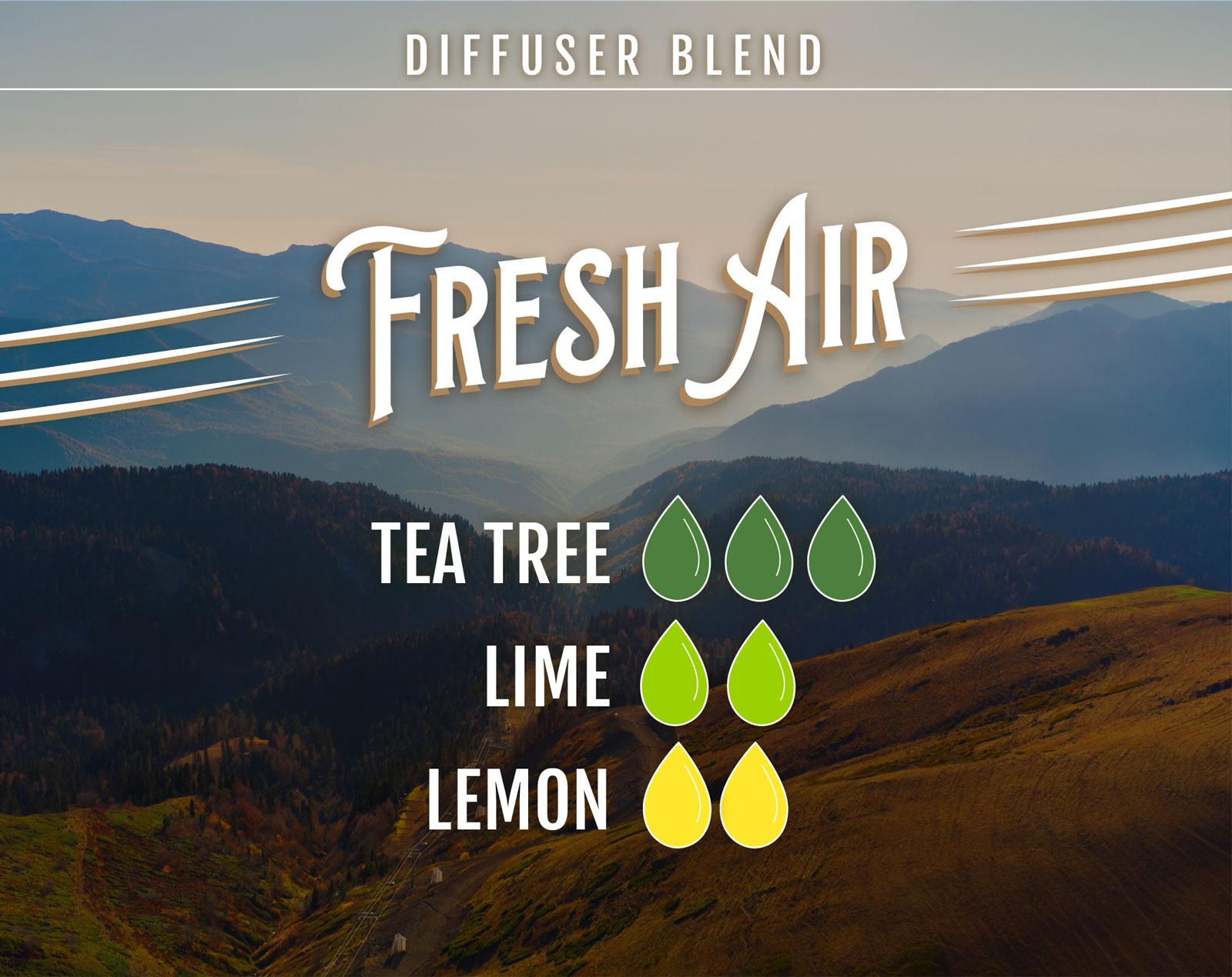 Tea Tree Essential Oil Diffuser Blend Fresh Air - 3 drops Tea Tree 2 drops Lime 2 drops Lemon