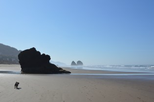 cannon beach 048