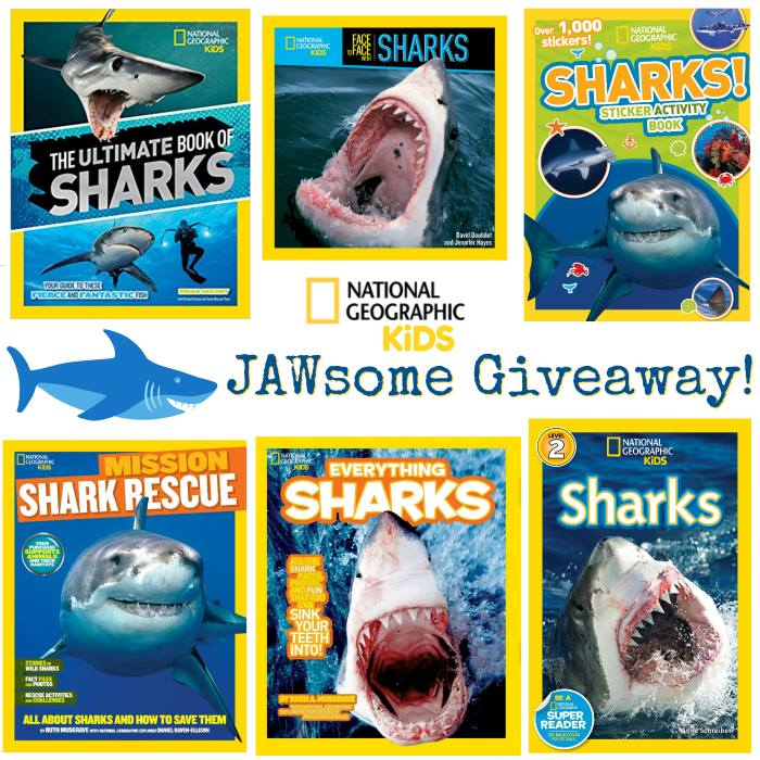 Win National Geographic Kids Shark Week Prize Pack | Drop