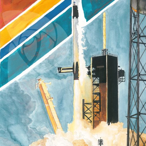 SpaceX DM-2 Launch by Danielle Rose