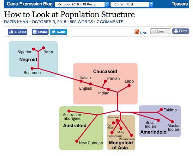 population-structure-race