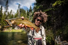 Colourful trout image