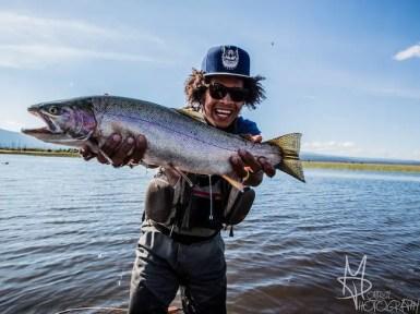 Rainbow trout image