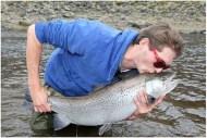 Sea trout photo
