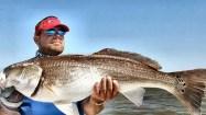 redfish bulls