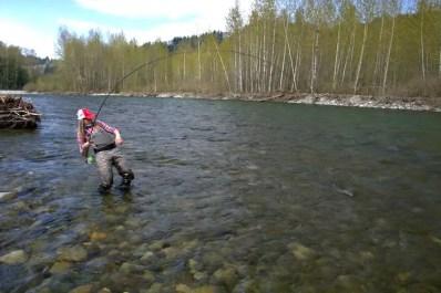 Paula Shearer landing a fish
