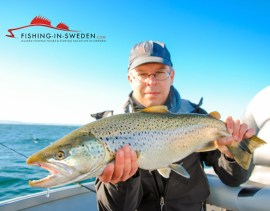 Trout-Fishing-in-Sweden