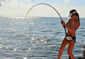 Boat fishing rods